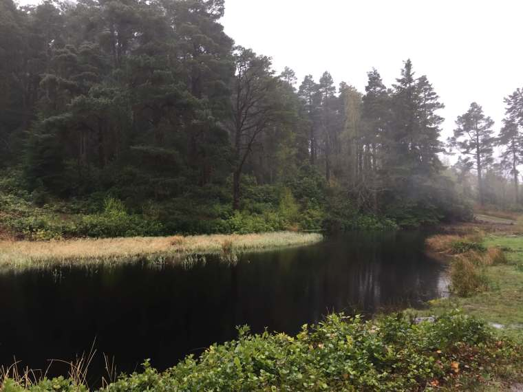 Cragside-Walks-Lake