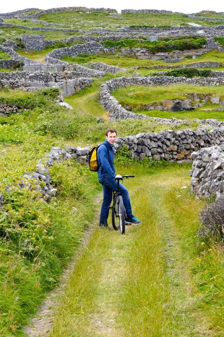 edd-grassy-path