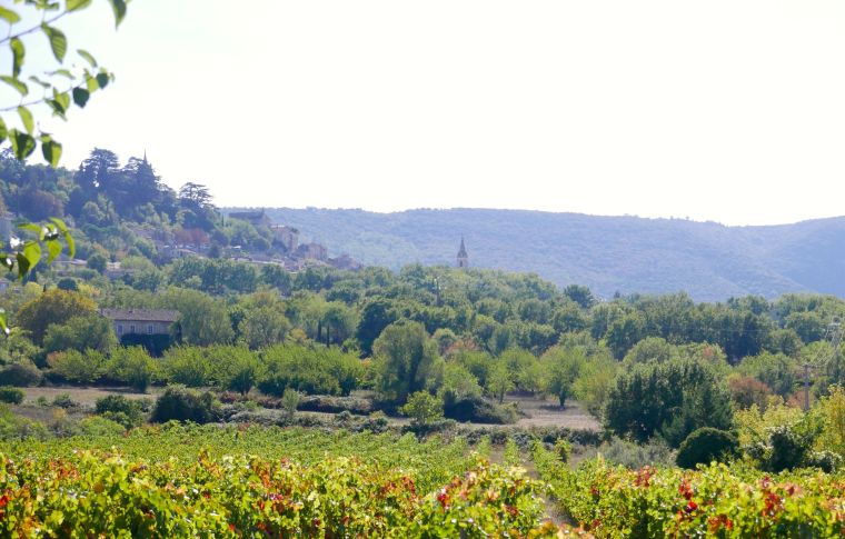 provence-in-october-11