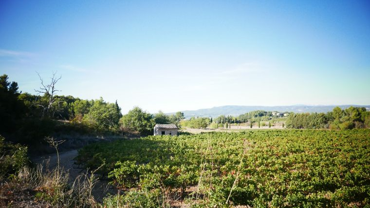 provence-in-october-4